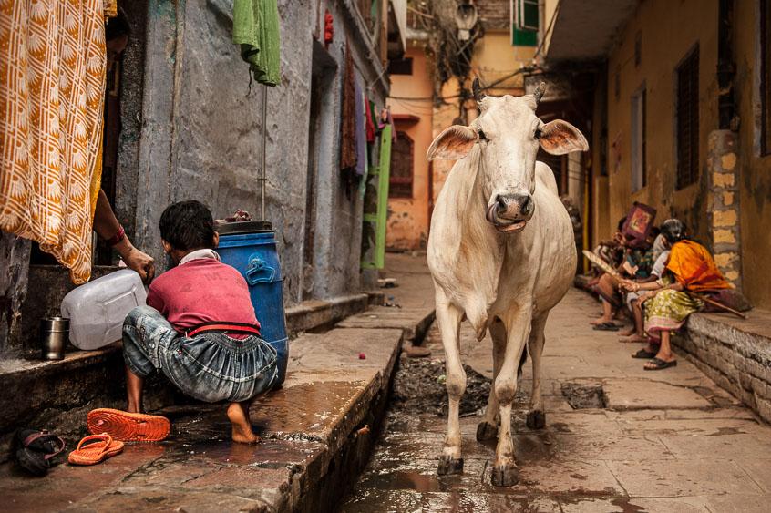 """Demis Milesi, """"Per strada"""" (Varanasi, India)"""