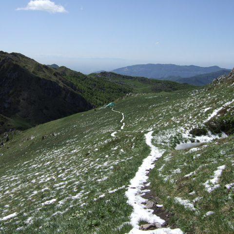 Cespedosio / Monte Venturosa